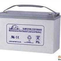 六安理士LEOCH蓄電池DJM1255可靠