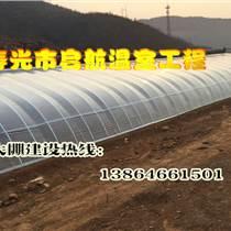 温室建设  几字钢温室大棚  寿光市启航温室