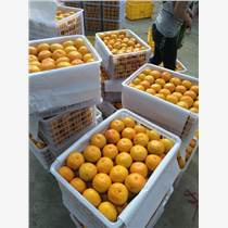 东莞果品贸易有限公司