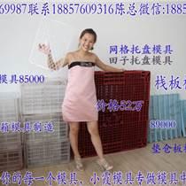 高档大型1米6塑料叉车栈板模具 1米4塑胶托盘模具做注射成型模
