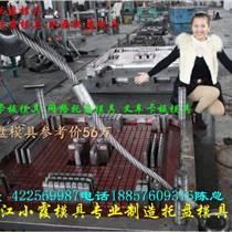 浙江PE藍莓藍模具廠家
