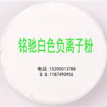 硅藻泥負離子粉廠家直銷