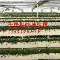 山東草莓立體種植槽廠家