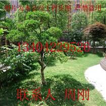 苏州空中花园景观工程、景观公司