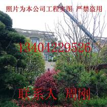 高端庭院景观绿化设计、花园设计