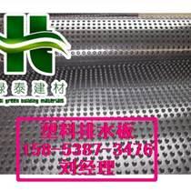 供應唐山6公分排水板屋頂綠化透水板