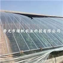 供应大棚膜 连栋温室专用膜 10丝PO膜 消雾防流滴