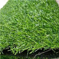 广东人造草坪,仿真人工草皮,人造假草,PE草坪