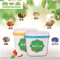 浙江專做塑料傳統酵素桶公司 臺州傳統酵素桶