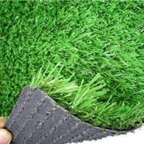 汝州幼儿园草坪批发及施工
