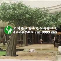工程樹枝仿真榕樹葉假榕樹枝樹葉園藝裝飾葉子仿真綠植假樹枝