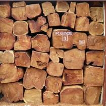 進口非洲原木緬茄木原木