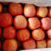 水果市場爛市