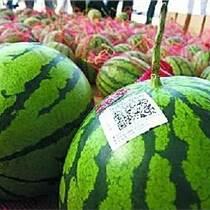 農產品追溯碼噴碼 包裝噴碼設備 食品包裝噴碼