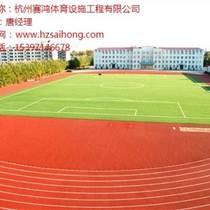 杭州塑膠跑道工程 塑膠跑道哪家好 杭州塑膠跑道加工 賽鴻供