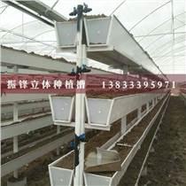 邢臺蔬菜立體種植槽廠家