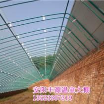 优质大棚骨架,优质温室大棚,安阳丰源