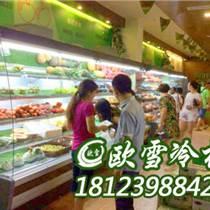 廣西桂林蔬菜冷藏柜定制兩層的批發商在哪