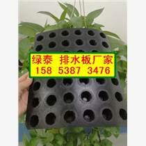 滁州屋顶车库排水板¥凸起2公分排水板15853873