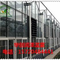 玻璃溫室工程 智能玻璃溫室建設 大棚骨架加工