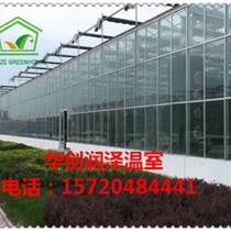 廠家直銷 高檔花卉溫室 多肉植物溫室 玻璃溫室