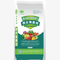 微生物菌剂瓜果蔬菜专用肥