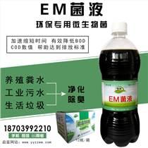 污水生物除臭菌劑價格用法及作用原理