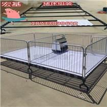 甘肃铸铁杠双体育肥保育床断奶猪保育栏