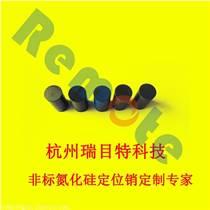 西安氮化硅陶瓷椭圆定位销,价格便宜!