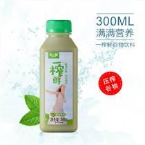 一榨鮮綠豆爽飲料批發廠家直銷瓶裝300g綠豆汁特價批