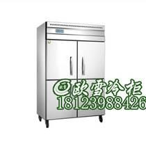江蘇雙門工業速凍冷柜價格哪有廠家直銷