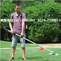 青海省小麥鋤地機微型打草機雙截桿
