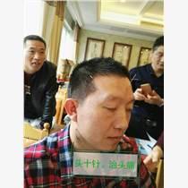 劉吉領新一針療法培訓 中醫針灸培訓班