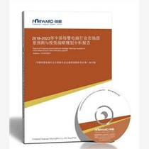行业云市场发?#39592;?#26223;预测与投资战略规划分析报告