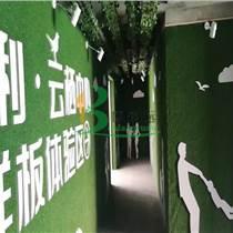 楊浦區工地工程塑料草坪批發+技術服務