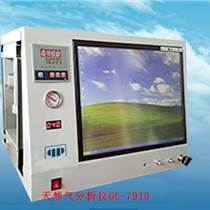 天然氣分析儀GC-7910