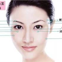 雒亞群絞針,針灸美容師培訓,針灸祛皺臨床應用研修班