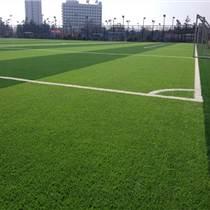 足球场人造草坪检测标准