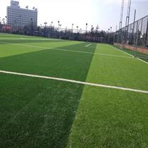 足球場人工草坪cad
