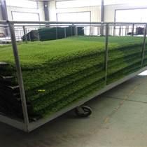 瑞金屋顶绿化人工草坪选博翔远