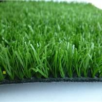 本溪人造草施工环保材料