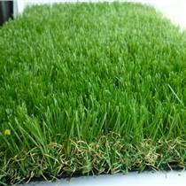鶴壁屋頂草坪綠化最低價