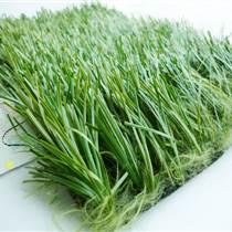 葫芦岛跑道人造草坪规格型号