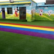 樟樹優質幼兒園草坪批發