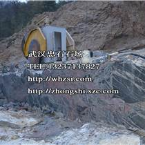 湖北草萍风景石 泰山石产品产地-湖北景观石奇石设计制