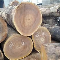黃柳桉木材,常綠喬木,樹干高而直,木材結構粗