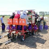 蔬菜多功能移栽機型2ZBX-2 成帆農業裝備