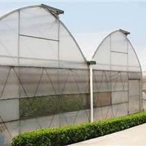 雙拱雙模溫室大棚經濟實用,管理方便