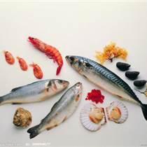 巴基斯坦墨魚進口代理公司專業進口報關報檢服務
