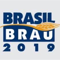 2019年澳大利亚啤酒展招展通知